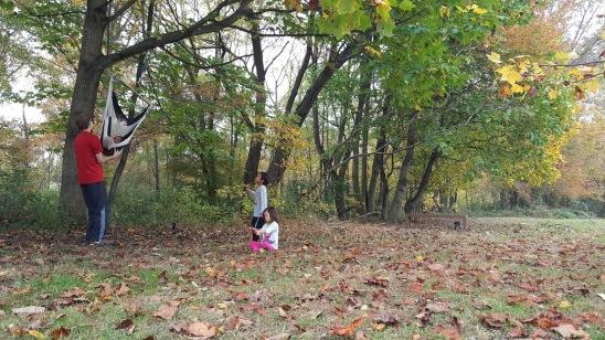 tree swing.jpg