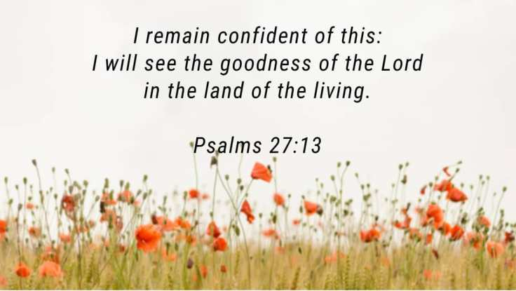 Image result for psalm 27:13
